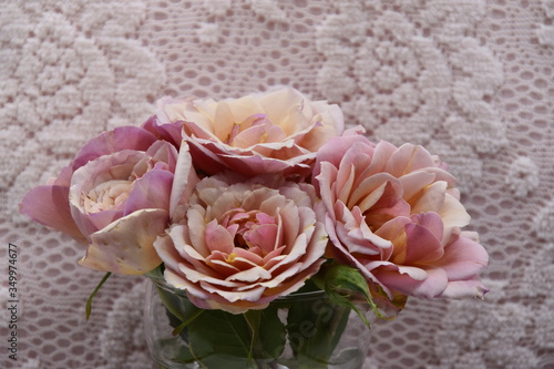 Photo roses anciennes