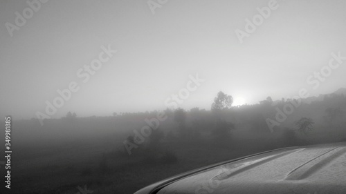Fototapety, obrazy: High Angle View Of Cropped Car By Plants On Field Against Sky During Foggy Weather