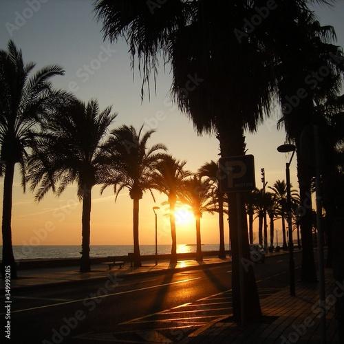 Fototapeta Street Amidst Silhouette Palm Trees By Sea Against Sky During Sunset obraz na płótnie