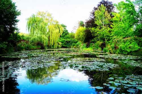 Photo Pond with lilies in Giverny