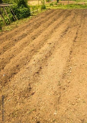 Photo Fresh tilled soil-Portrait photo of a fresh tilled garden bed.