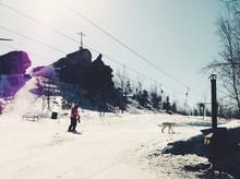 Man And Dog On Ski Slope