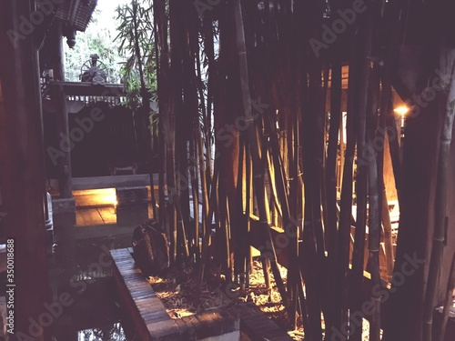 Photographie Bamboos In Pond