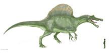 スピノサウルス 恐竜...