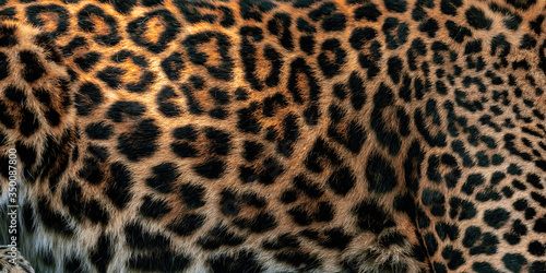 Leopard skin texture for background (real fur) Canvas-taulu