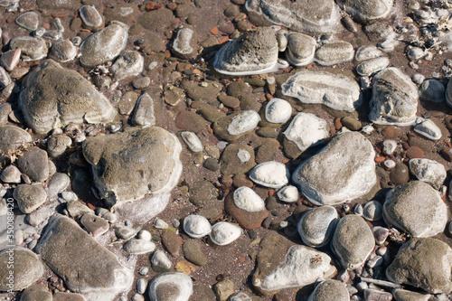 Fotografía Piedras de rio mojadas a la mitad