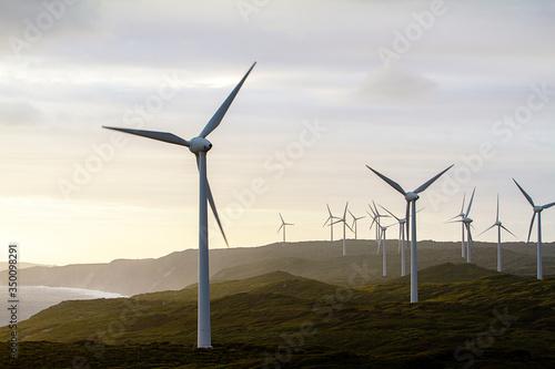 Obraz na plátně Albany wind farm at sunset, Western Australia