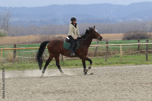 Fototapeta The girl gallop on the horse in the riding school