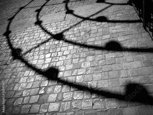 Stampa su Tela Shadow Of Railing On Paving Stone Street At Night