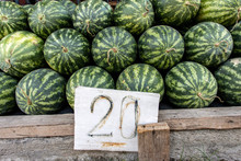 A Pile Of Fresh Water Melons With Price Tag. Rows Of Watermelons For Sale At The Market.