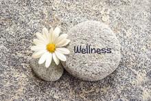 Word Wellness Written On A Sto...