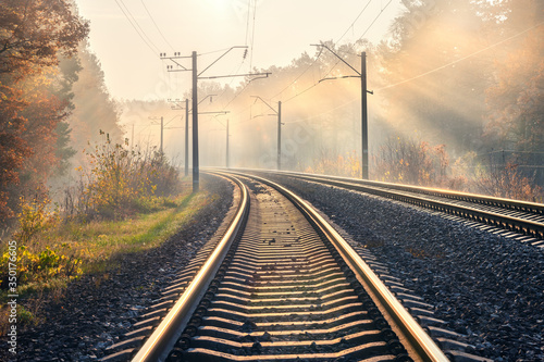 Fotomural Railroad in beautiful forest in fog at sunrise in autumn