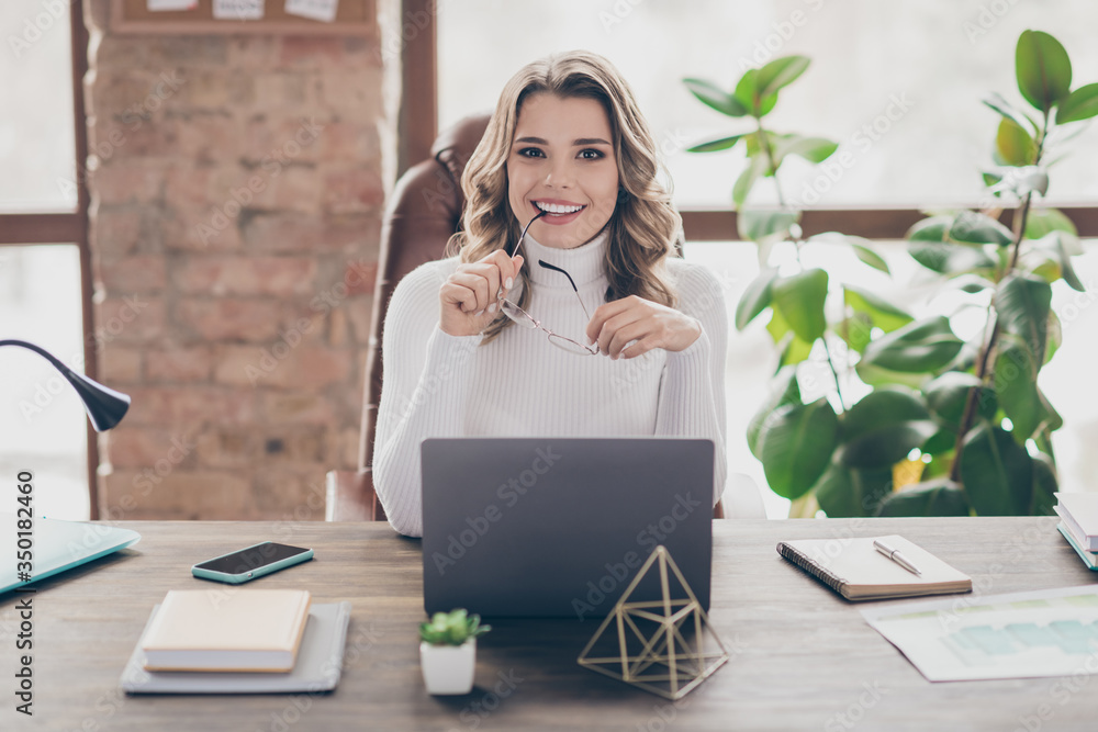 Fototapeta Portrait of nice attractive cheery wavy-haired marketer hr recruiter recruiting cv interview resume research stay home quarantine modern loft brick industrial interior style workplace workstation