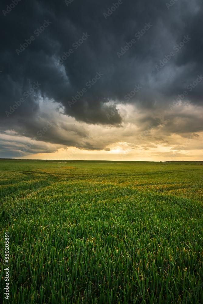 Fototapeta Storm clouds , dramatic dark sky over the rural field landscape