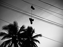 Low Angle View Of Palm Trees And Shoes Hanging On Cable Against Sky