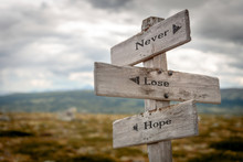 Never Lose Hope Text Engraved On Wooden Signpost Outdoors In Nature.