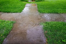 Pavement During Rain