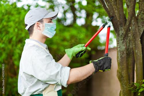 Foto Professional gardener pruning a tree wearing a mask, coronavirus concept