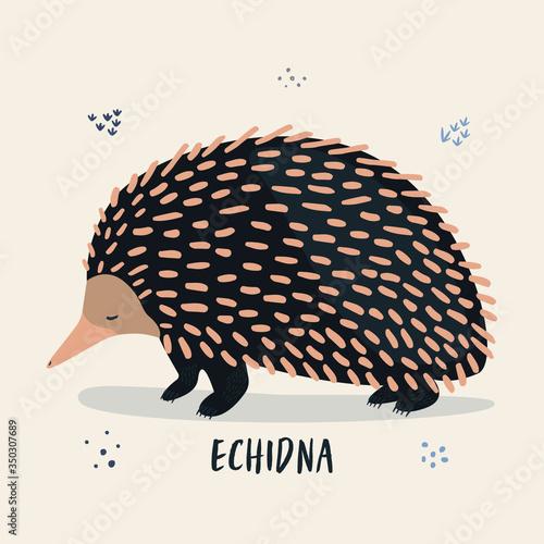 Cuadros en Lienzo Vector cartoon illustration of a sleepy echidna