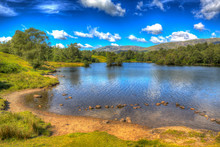 Tarn Hows Lake District National Park England Uk Near Hawkshead With Trees In Colourful HDR