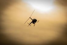 Nadlatujący Czarny Helikopter...