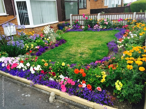 Fotografija High Angle View Of Multi Colored Flower Bed In Back Yard