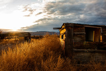 Old Abandoned Shed In A Field