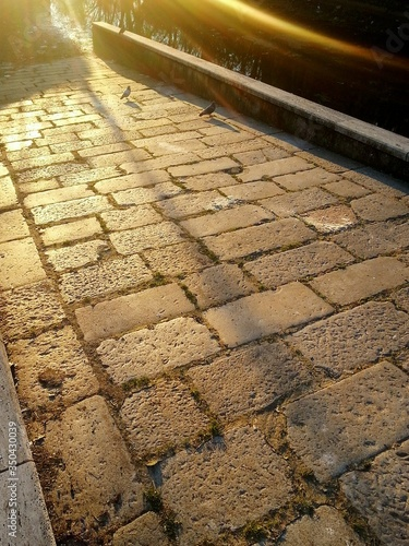 Fotografia High Angle View Of Paving Stone Sidewalk