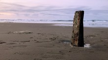 A Piece Of The Sujameco Shipwreck Exposed During Low Tide At Horsfall Beach Near Coos Bay, Oregon. Birds Feeding In The Surf Out Of Focus.