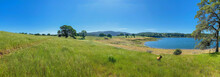 Panorama Of Meadow And Lake Fo...