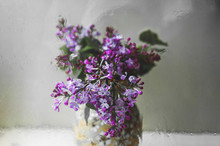 Branches Of Fresh Blooming Purple Lilac With Green Leaves In A Vase On A Light Table In Natural Light Through A Wet Glass With Water Drops And Streaks, Selective Focus, Art Shot