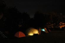 Illuminated Tents In Garden