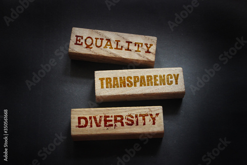 Photo EEquality transparency diversity words written on wooden blocks