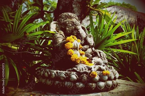 Fototapeta Ganesh Statue