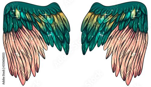 Valokuva Beautiful magic glittery  magic green yellow powdery pink vector angel wings