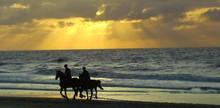 Silhouette People Horseback Ri...
