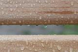 drewno,deska,ekologia,botanika,materiał,woda,krople wody,deszcz
