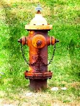 Rusty Fire Hydrant On Grassy Field