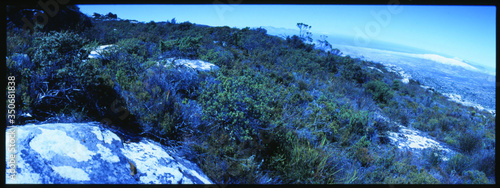 Fotografia Mountain Side With Rocks And Shrubbery