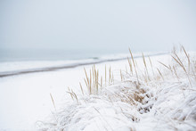 Snow Covered Beach During Wint...