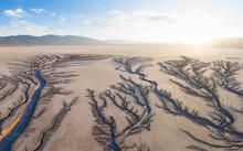 Erosion Cuts Fratcal Tree Look...