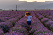 Woman On Lavender Field At Sum...