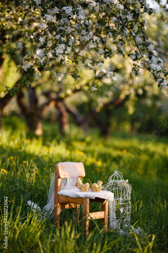 Obraz Vintage children' Decore in spring blooming apple garden. Wooden children chair in the garden, outdoor decorative composition decorative cell with flowers & ceramic birds. Spring blossom - fototapety do salonu