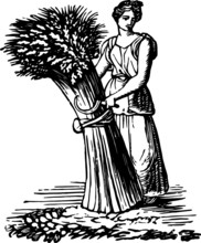 Old Vintage Drawing Of A Wheat Gatherer, Vector Drawing Of A Engraving From The 19th Century