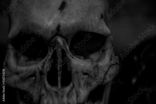 Obraz na plátně Close-up Of Broken Skull At Santa Maria Sopra Minerva