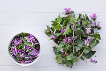 Red Dead-nettle For Culinary A...