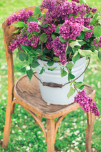 Spring Fresh Violet Lilac Flowers In The Blue Vintage Bucket On The Green Grass And Brown Wooden Fence Background, White Petals On The Ground. All On Vintage Yellow Chair. Free Copy Space For Text