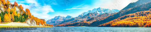 Fotografie, Obraz Astonishing autumn scene in Swiss Alps and views of Sils Lake (Silsersee)
