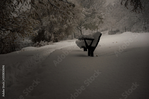Fototapeta Snow Covered Bench On Snowfield