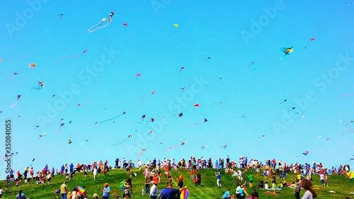 Fototapeta Large Group Of People Flying Colorful Kites On Hill obraz